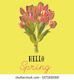 Hello Spring.. Red tulips bouquet. Vector illustration of spring tulips on yellow background