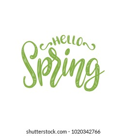 Hello Spring vector illustration on white background. Hand lettering for inspirational poster, card etc. Motivational quote typography design.