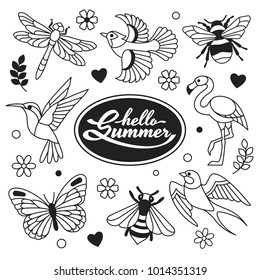 Hello Summer icons collection. Vector illustration of outline icons of birds and insects, such as hummingbird, flamingo, swallow, blue jay, dragonfly, butterfly and bee. Isolated on white.