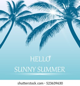 Hello summer . Tropical palm leaves on blue sky  background