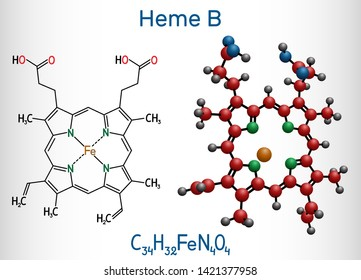 Heme B, haem B, protoheme IX molecule. It is component of hemoglobin, myoglobin, peroxidase and cyclooxygenase families of enzymes. Structural chemical formula and molecule model. Vector illustration