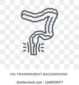Hemorrhoid icon. Trendy flat vector Hemorrhoid icon on transparent background from Diseases   collection. High quality filled Hemorrhoid symbol use for web and mobile