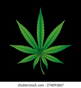 Hemp Cannabis Leaf on Black Background