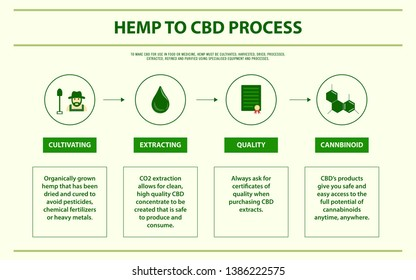 Hemp to CBD Process horizontal infographic illustration about cannabis as herbal alternative medicine and chemical therapy, healthcare and medical science vector.