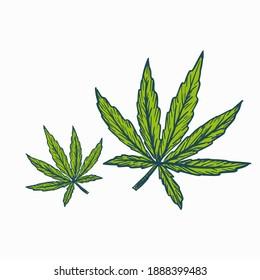 Hemp marijuana leaves symbol engraving sketch style
