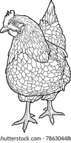 hen black and white drawing