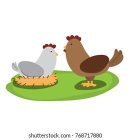 hen and rooster cartoon design