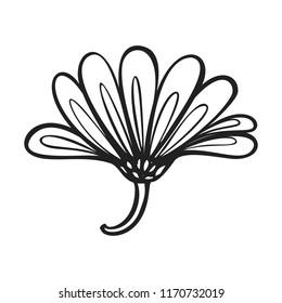 Herb calendula flower icon. Simple illustration of herb calendula flower vector icon for web design isolated on white background