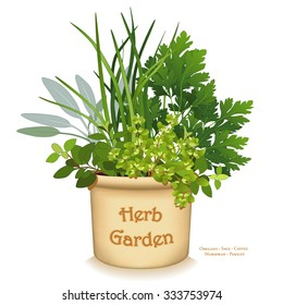 Herb Garden Planter. Clay garden flowerpot with gourmet cooking herbs, left to right: Italian Oregano, Sage, Chives, Flat Leaf Parsley, Sweet Marjoram, isolated on white. EPS8 compatible.