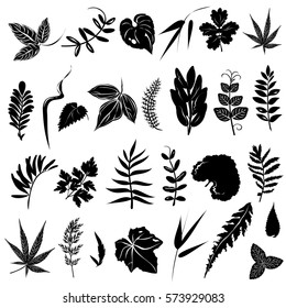 Herb  leaves. Set of hand drawn vector silhouettes on white background.
