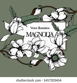 Herbal illustration on label packaging design. Hand drawn vector with magnolia