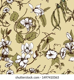 Herbal illustration on label packaging design. Hand drawn vector botanic seamless pattern with magnolia  flowers