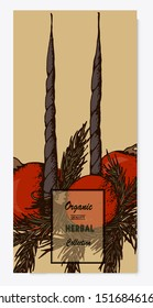 Herbal illustration on label packaging design. Hand drawn vector botanic set with candles, invitation