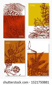 Herbal illustration on label packaging design. Hand drawn vector botanic set with branch candle and cone, invitation