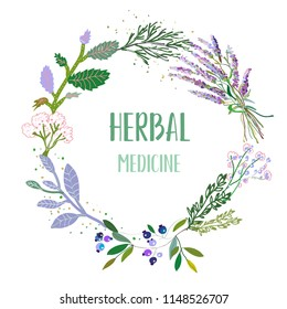 Herbal medicine card or label with frame - flowers, plants and herbs. Vector graphic illustration