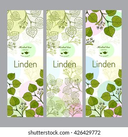 Herbal tea collection. Linden banner set. Hand drawn vector illustration