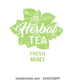 Herbal Tea with Fresh Mint Logo Template. Isolated Hand Drawn Green Silhouette Label with Peppermint.Spearmint Botany Plant and Hand-Lettering Calligraphy Inscription. Botanical Design, Medical theme.