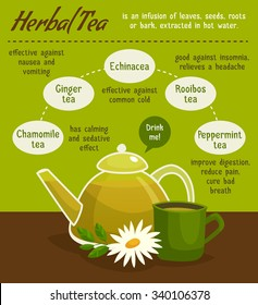 Herbal tea infographics with teapot, cup and chamomile flower / cartoon vector illustration / healing deseases / Health advices