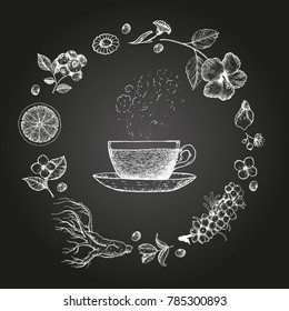 Herbal Tea vector illustration. Vector design with herbal tea ingredients. Hand drawn sketch collection. Engraved style.