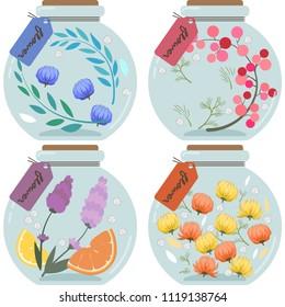 Herbarium illustration sets (round type)