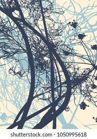 herbs of the garden silhouettes. Vector Illustratio