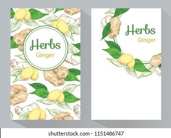 Herbs Ginger vertical banners, round ginger root and ginger leaves frame, vector illustration, line art decorative Ginger for design cosmetic, natural medicine, herbal tea, food menu.