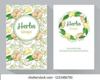 Herbs Ginger vertical banners, round ginger root and ginger leaves frame, vector illustration, line art decorative Ginger for design cosmetic, natural medicine, herbal tea, food menu.
