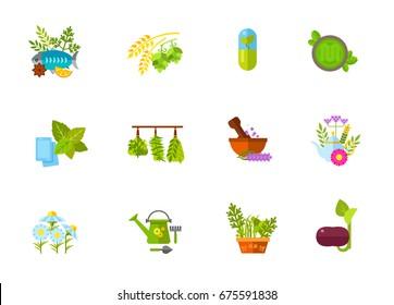 Herbs icon set