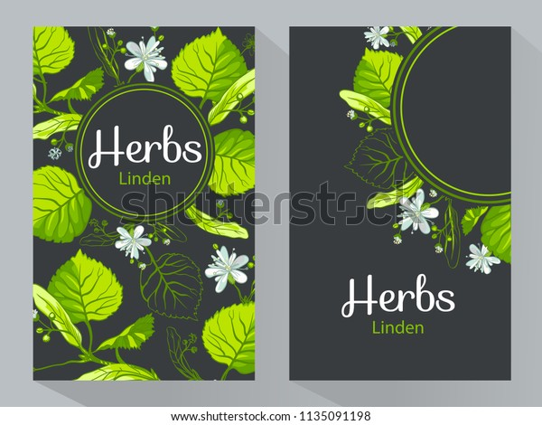 Herbs Linden Vertical Banners Vector Illustration Stock Vector Royalty Free 1135091198