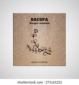 Herbs and Spices Collection - Bacopa.  Hand-sketched herbal element on cardboard background. Suitable for ads, signboards, packaging and identity designs