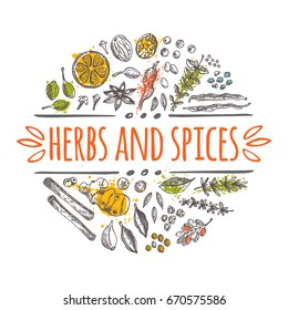 Herbs and spices concept design. Round circle composition. Hand drawn vector illustration. Can be used for festival, menu, cafe, restaurant, bar, poster, banner, emblem, sticker, placard.