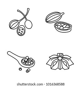 Herbs & Spices outlines vector icons