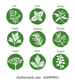 herbs and spices set art eps illustration icon 3 fresh