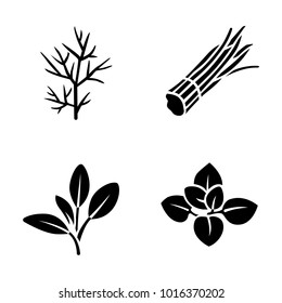Herbs & Spices vector icons