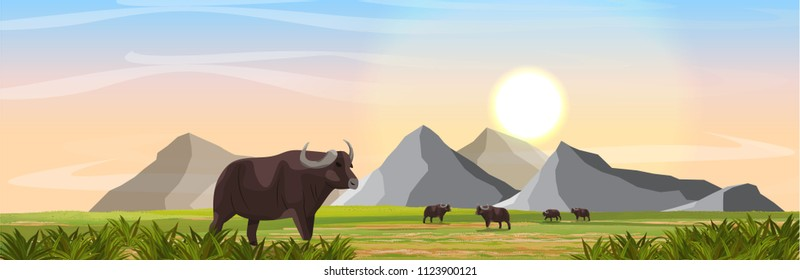 A herd of African black buffalo in the savannah. Mountains on the horizon. Realistic vector landscape. Nature and animals of Africa. Reserves and national parks.