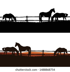 herd of domestic horses grazing in the field behind wooden fence - animal farm vector silhouette outdoors scene