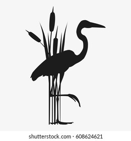 Heron in reeds stands on one leg. Stock vector illustration