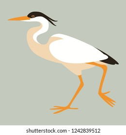 the heron  walking ,vector illustration ,profile view
