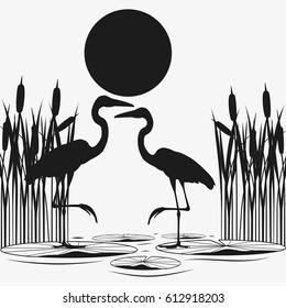 Herons couple black silhouettes. Wetland and sunset. Isolated on white background. Flat vector stock illustration