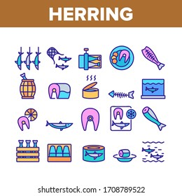 Herring Marine Fish Collection Icons Set Vector. Herring Sliced Piece And Fillet, Skeleton And Carcass, Cooked And Frozen, Package And Box Concept Linear Pictograms. Color Illustrations