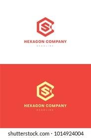 Hexagon company logo template.