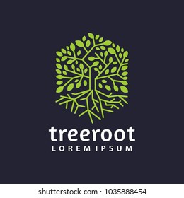 hexagon tree root logo icon