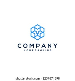 Hexagonal lion head logo template design