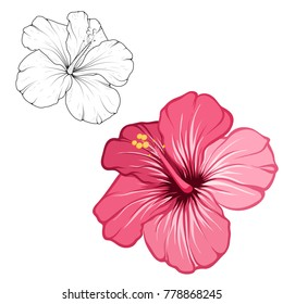 Outline Hibiscus Flower Images Stock Photos Vectors Shutterstock