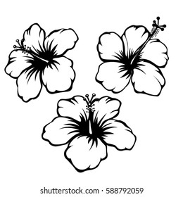 Hibiscus black and white vector set