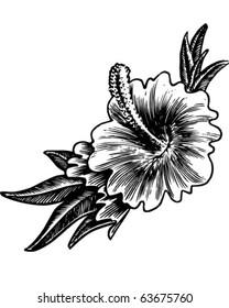 Hibiscus Flower - Retro Clipart Illustration