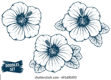 Hibiscus flower sketch. Tropical plant doodle. Floral scrawl. Scribble vector. Jungle nature. Hibiscus plant. Hand drawn effect petal illustration. Highly detailed hibiscus blossom and leaves drawing.