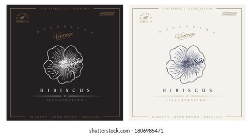 Hibiscus flower vintage logo illustration