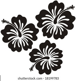 hibiscus flowers ilustration in vector format very easy to edit, tropical flower very usable for design complement