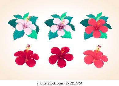 Hibiscus flowers and leaves set. Retro vector design elements